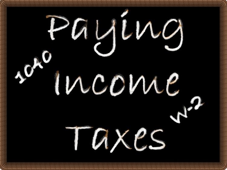 individual tax return instructions supplement 2013